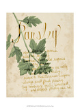 Herb Study V Prints by Grace Popp