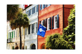 Flag Of Charleston With Palmetto And Crescent Moon Photographic Print by George Oze