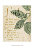 Herb Study I Prints by Grace Popp