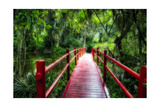 South Carolina Zen Path Photographic Print by George Oze