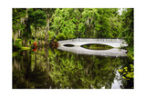 Little White Southern Footbridge Photographic Print by George Oze