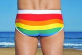 Someone Wearing a Rainbow Swimsuit on the Beach Photographic Print by  nito
