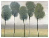 Row of Trees II Prints by Tim
