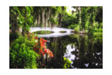 Little White Plantation Bridge Photographic Print by George Oze