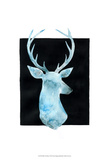 White Tail Bust I Posters by Grace Popp