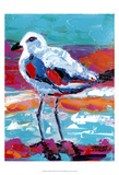 Seaside Birds I Prints by Carolee Vitaletti