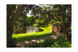 Southern Plantation Scenic, Charleston, SC Photographic Print by George Oze