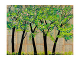 Five Trees in a Grove Photographic Print by Blenda Tyvoll