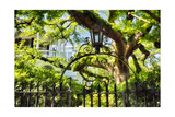 Charleston Villa Garden With Live Oak Tree Photographic Print by George Oze