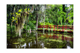 Little Red Southern Footbridge Photographic Print by George Oze