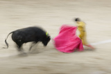 Bullfight in the Plaza De Toros Monumental De Las Ventas Photographic Print by Jon Hicks