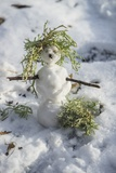 Snowman at Vallombrosa Photographic Print by Guido Cozzi