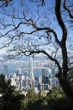 City Skyline from Victoria Peak, Hong Kong, China Stampa fotografica di Paul Souders