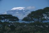 Kilimandjaro Reproduction photographique par  DLILLC