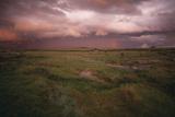 Storm on the Savanna Photographic Print by  DLILLC