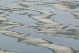 Melting Sea Ice Photographic Print by  DLILLC