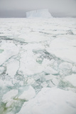 Sea Ice with Iceberg Photographic Print by  DLILLC