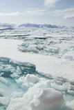 Sea Ice Surrounding Islands Photographic Print by  DLILLC