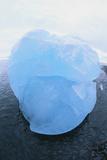 Iceberg Washed Ashore Photographic Print by  DLILLC