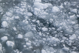 Sea Ice Broken up by a Ship Photographic Print by  DLILLC