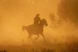 Cowgirl Riding in the Dust Reproduction photographique par  DLILLC