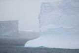Icebergs Photographic Print by  DLILLC