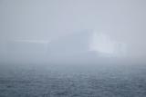 Iceberg Seen through Fog Photographic Print by  DLILLC