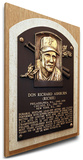 Richie Ashburn Baseball Hall of Fame Plaque on Canvas (Small) - Philadelphia Phillies Stretched Canvas Print