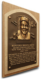 Monte Irvin Baseball Hall of Fame Plaque on Canvas (Small) - Newark Eagles, New York Giants Stretched Canvas Print