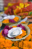Flowers and Candle to Be Released during Ganga Aarti Ceremony Photographic Print by Jon Hicks