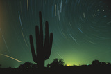 Night in the Desert Photographic Print by  DLILLC