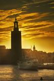 Sunset behind Stadshuset Bell Tower in Stockholm Fotografisk tryk af Jon Hicks