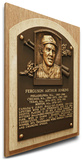 Fergie Jenkins Baseball Hall of Fame Plaque on Canvas (Small) - Chicago Cubs Stretched Canvas Print