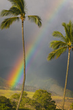 Rainbow near Lahaina Photographic Print by Jon Hicks