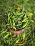 Green Chilies in a Myanmar Market Photographic Print by Jon Hicks