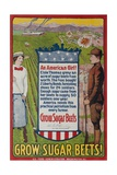 Grow Sugar Beets, American WWI Home Front Poster Giclee Print by David Pollack