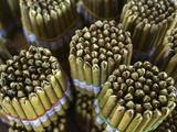 Hand Rolled Cigars Fotografisk tryk af Jon Hicks