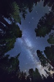 The Milkyway above Sequioa National Park Photographic Print by Jon Hicks