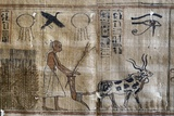 Ancient Egypt : Agriculture, Plowing and the Eye of Horus Photographic Print
