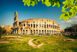 View on Colosseum in Rome, Italy Photographic Print by  sborisov