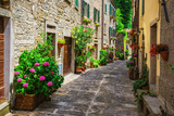 Italian Street in A Small Provincial Town of Tuscan Photographic Print by  Alan64