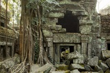 Ta Prohm Pagoda at Angkor Wat, Cambodia Photographic Print by Paul Souders