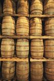 Empty Whiskey Casks in Storage Photographic Print by Macduff Everton