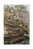 The Nile Crocodile by Alfred Edmund Brehm Giclee Print by Stefano Bianchetti