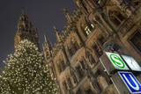 Christmas Tree at Neues Rathaus in Munich Photographic Print by Jon Hicks