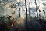 Australian Bush Fire Photographic Print by Paul Souders