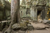 Ta Prohm Pagoda at Angkor Wat, Siem Reap, Cambodia Photographic Print by Paul Souders