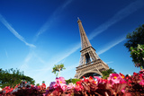 Sunny Morning and Eiffel Tower, Paris, France Photographic Print by Iakov Kalinin