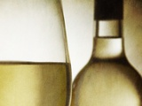 Glass of White Wine and Bottle Photographic Print by Steve Lupton