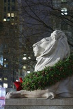 New York Public Library Lion Decorated with a Christmas Wreath during the Holidays. Photographic Print by Jon Hicks